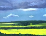 Canola Fields 3 (sold)